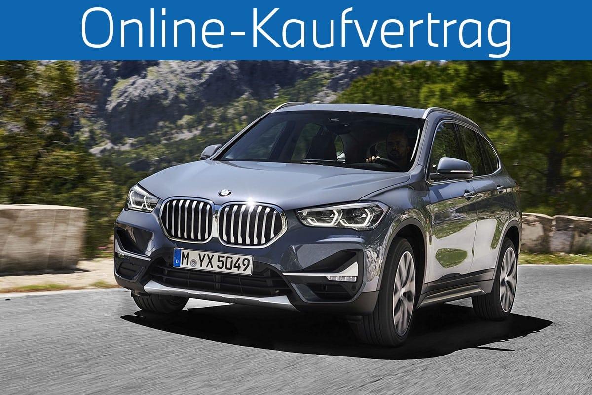 BMW X1 Online