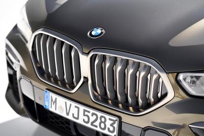 BMW X6 ab 2019 - Nieren